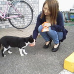 02@deco.jpg (猫ちゃん)